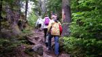 Caminata aventurera para el bienestar - Noticias de