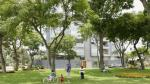 Distritos limeños tendrán que realizar un inventario de parques y árboles - Noticias de ana zuchetti